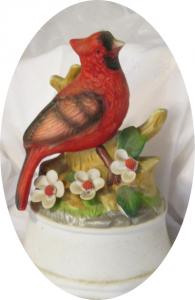 Cardinal Bluff - Southern Gentleman, Yvonne Lehman, author
